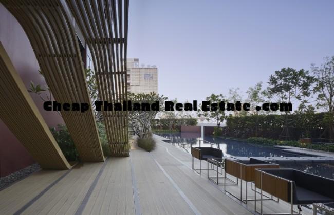 wyne_pool-deck1